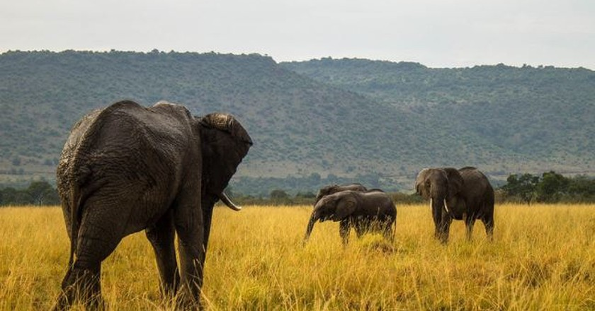Beautiful Kenyan landscape