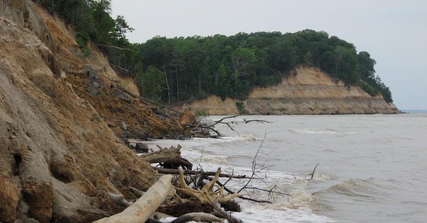 Calvert Cliffs State Park, Maryland