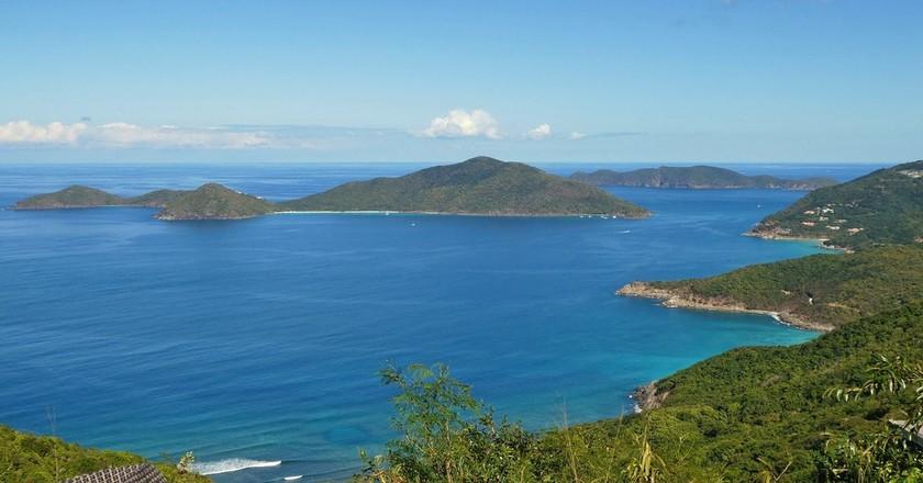 Help Rebuild the British Virgin Islands Devastated Ecosystem
