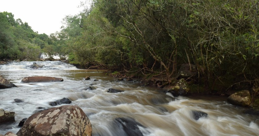 A river in Misiones, Argentina