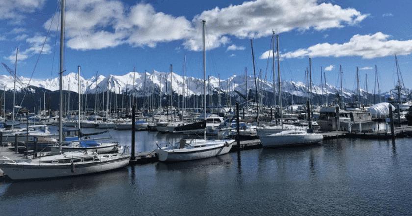 Seward Harbor   © Bailey Berg / Instagram