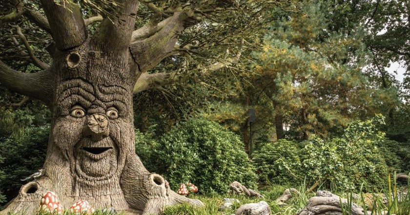 The enchanted, storytelling tree