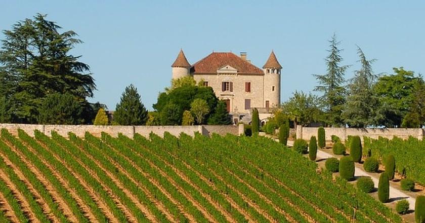 Grape harvesting in France | © skeeze / Pixabay