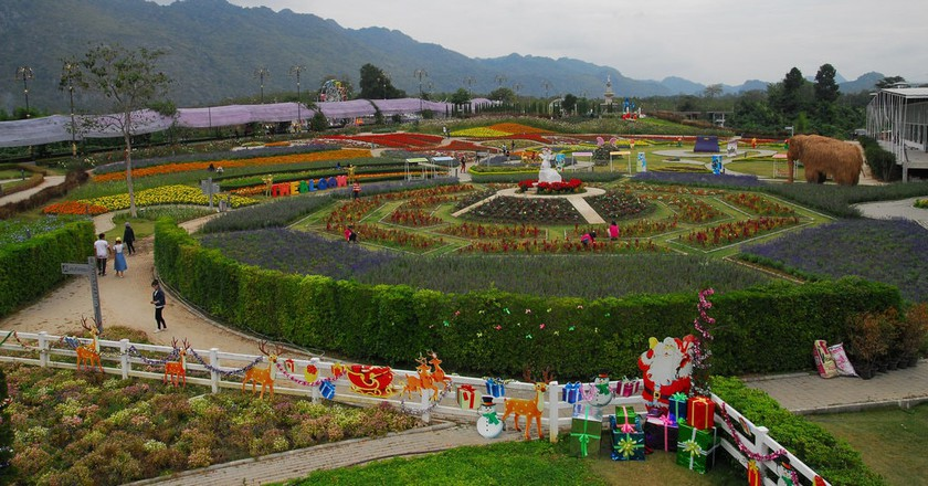 One of Nakhon Ratchasima's many flowery farms | © Thanate Tan / Flickr