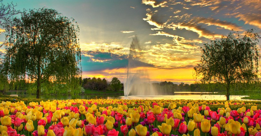 The Chicago Botanic Garden is a beautiful place for a first date