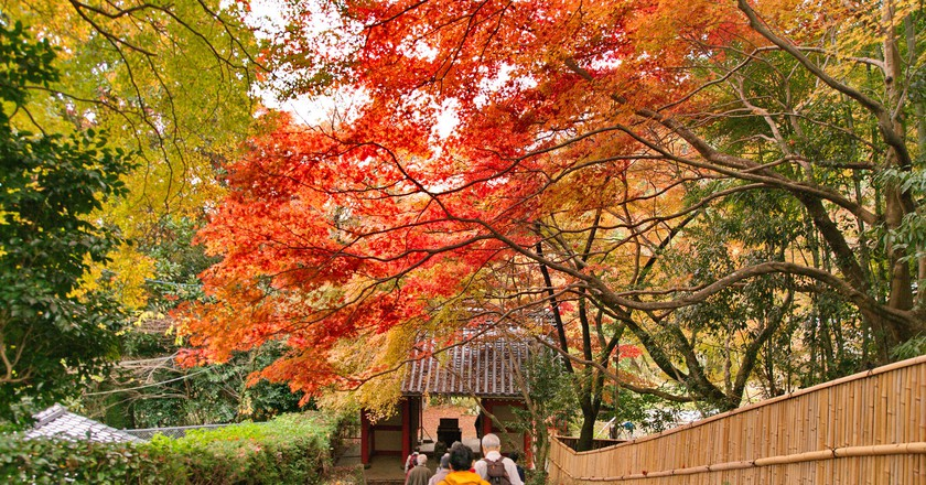 The Best Places To Visit In Japan During Autumn
