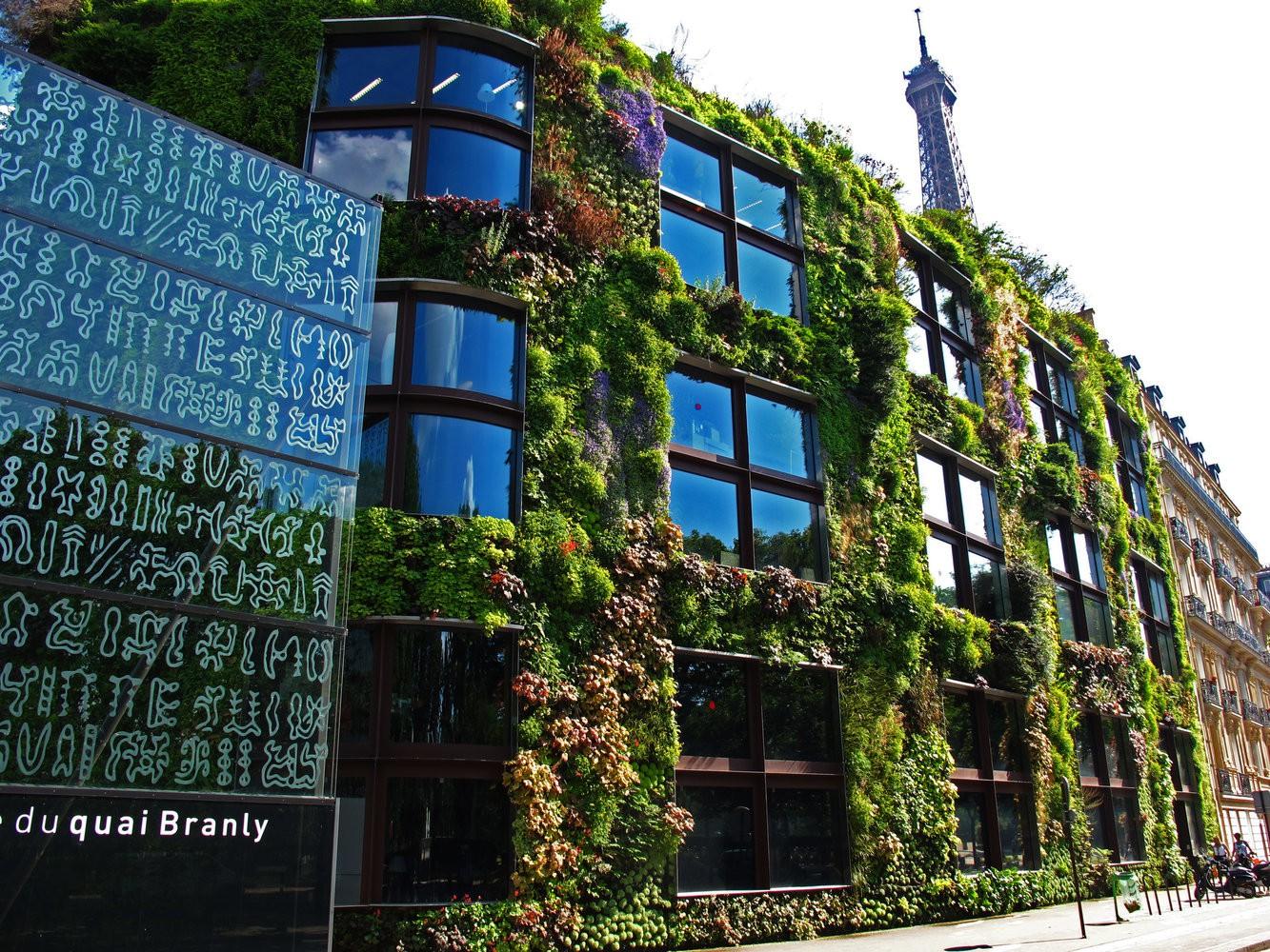 Patrick Blanc & The Hanging Gardens Of Paris