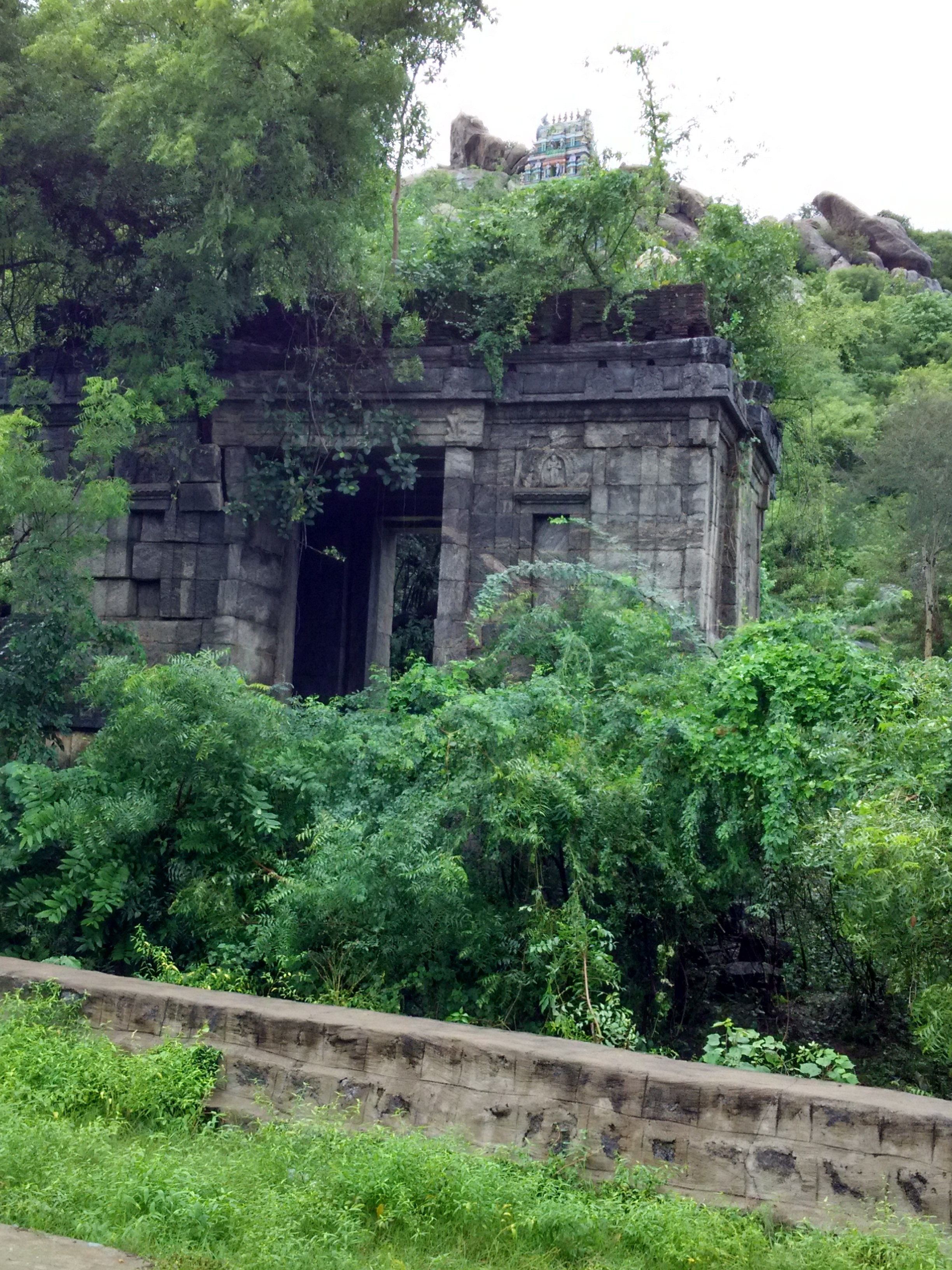 Tamil Nadu's Landscapes And Ancient Poetry