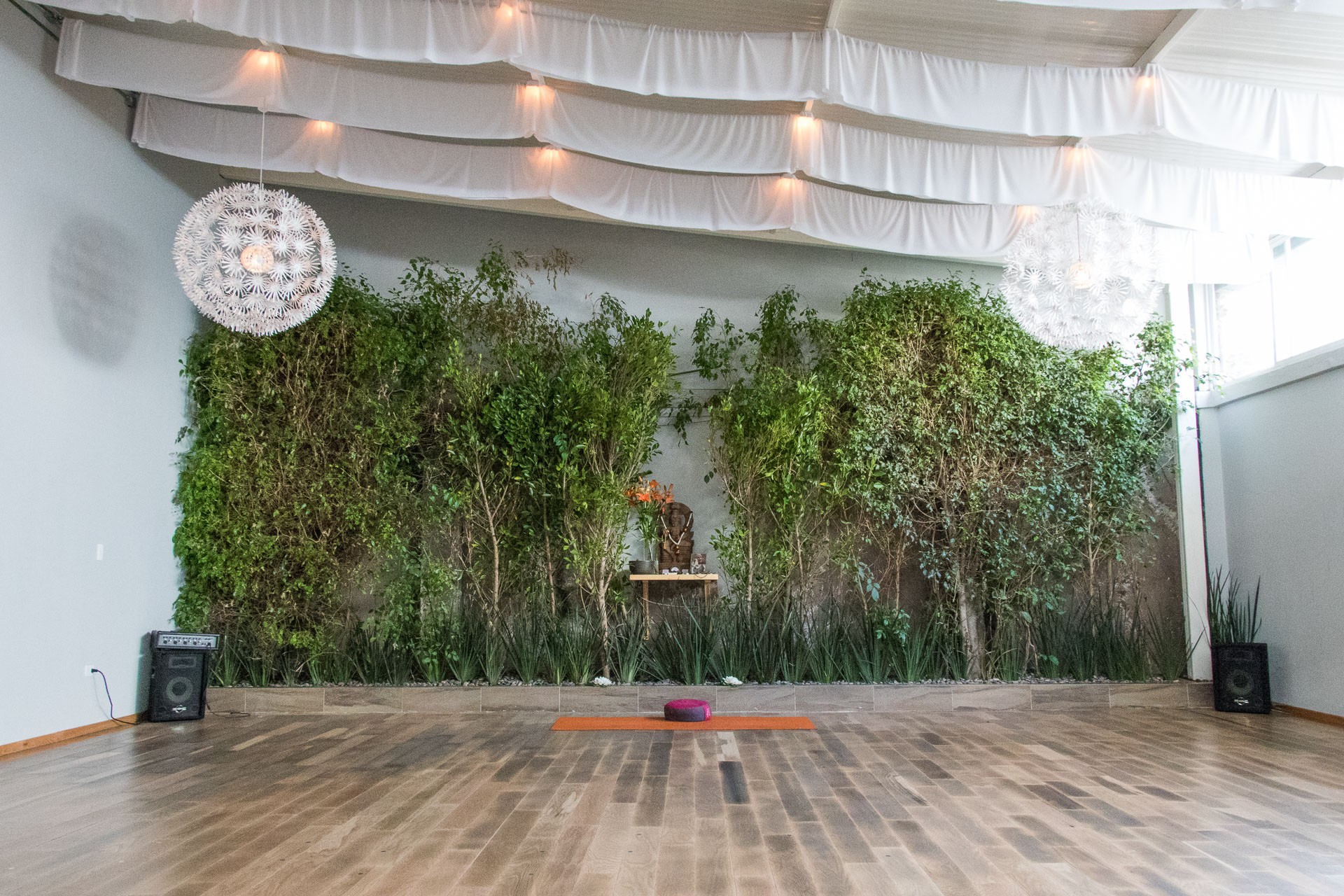 The 10 Best Yoga Studios To Try In Mexico City