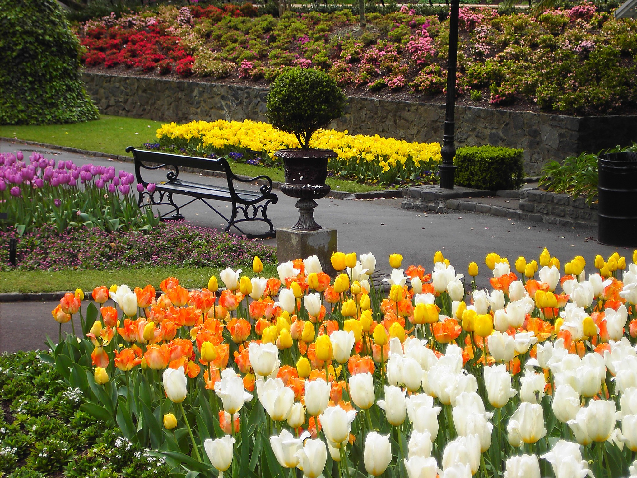 The Best Parks And Gardens In Wellington New Zealand