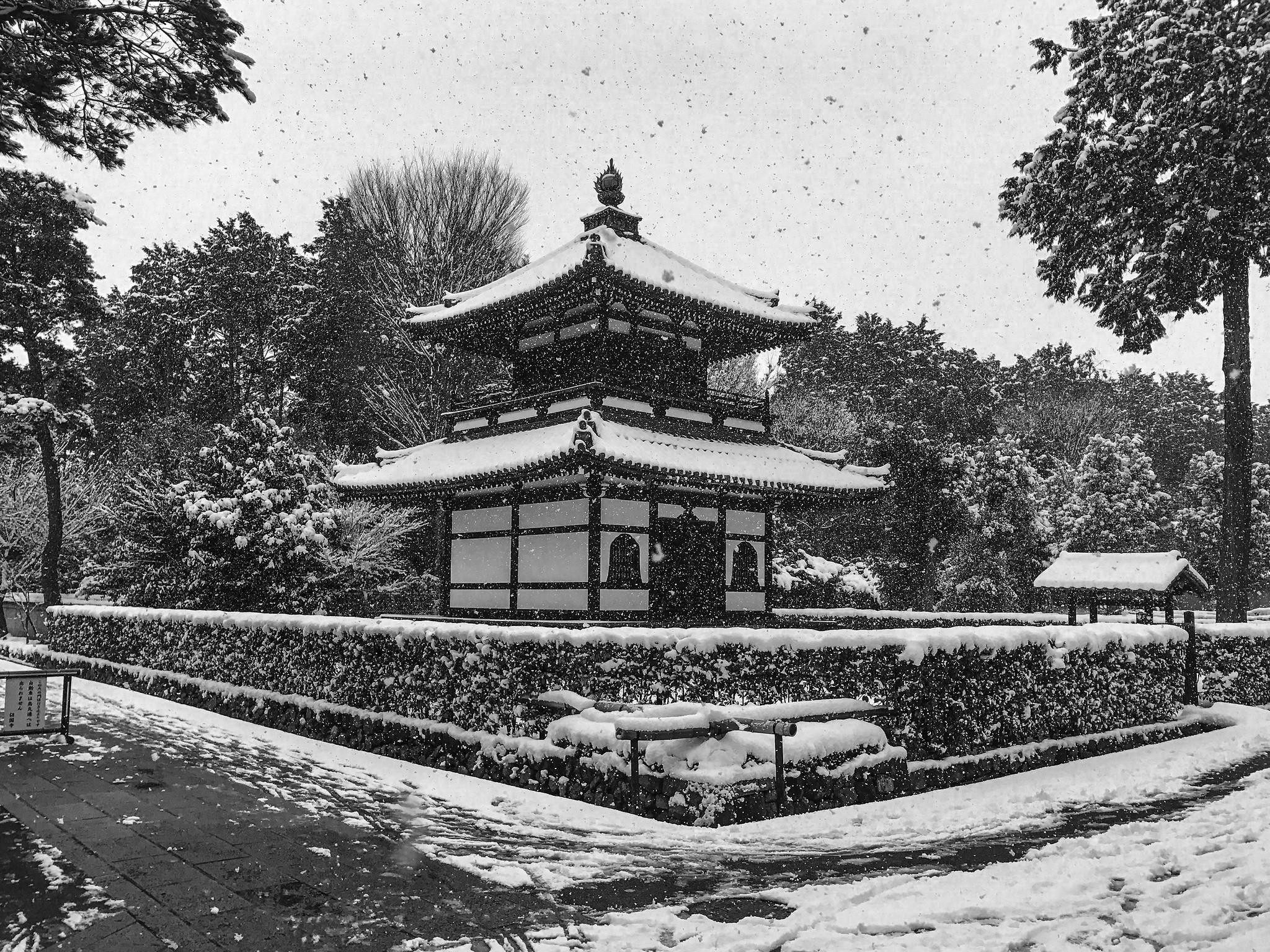12 Haiku That Reflect on Zen Buddhism
