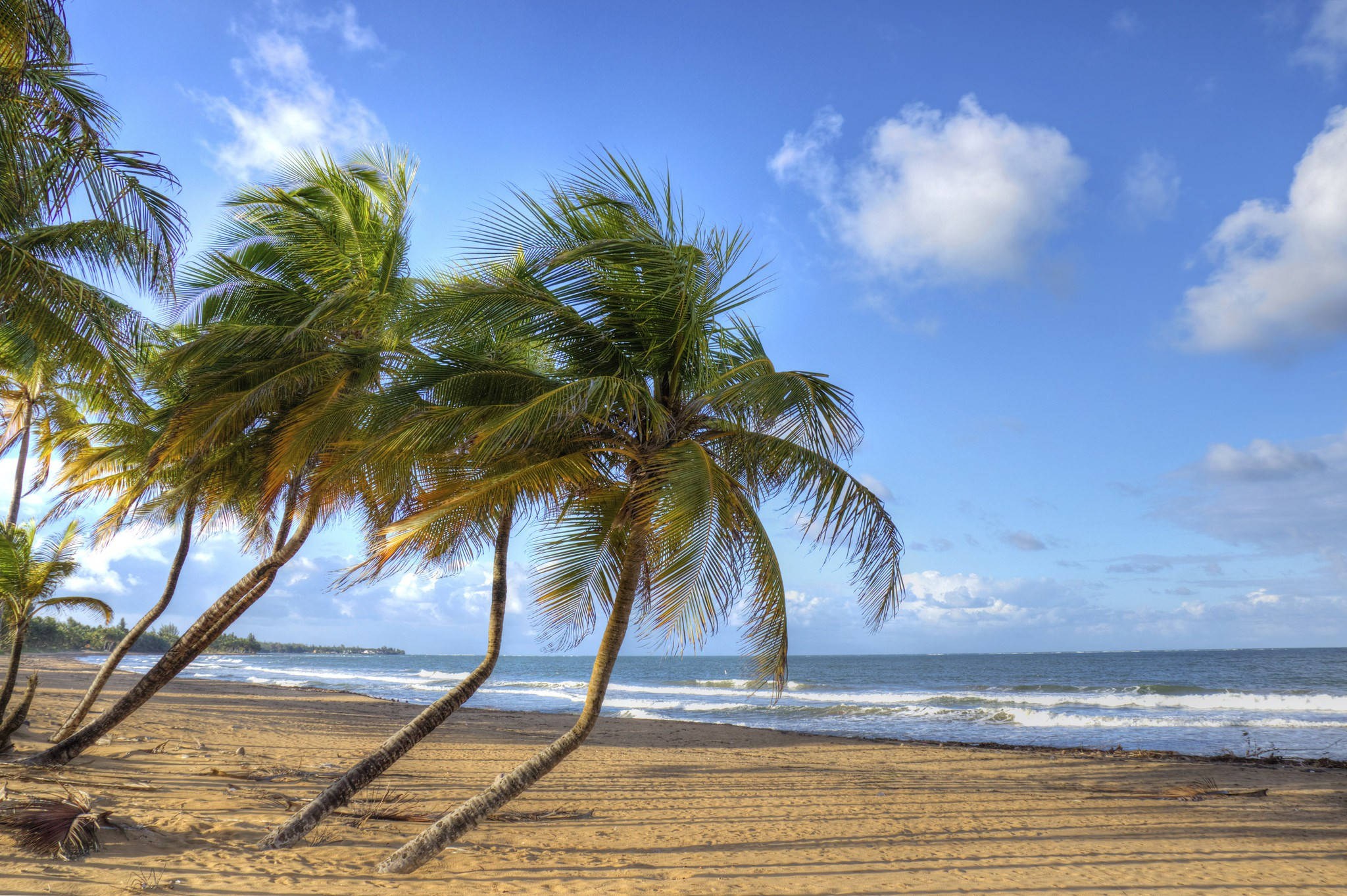 7 Things You Can Do With Kids in Puerto Rico