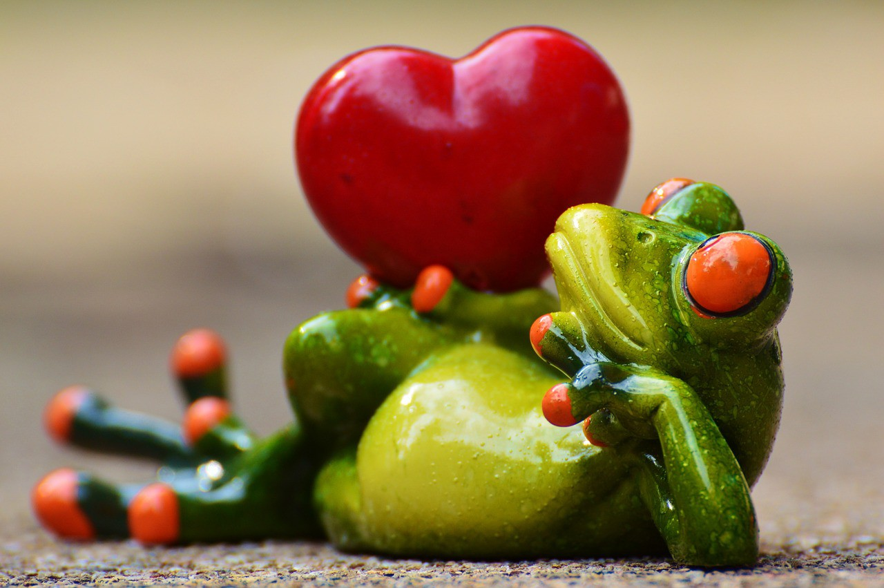 11 Beautiful Ways to Say 'I Love You' in German