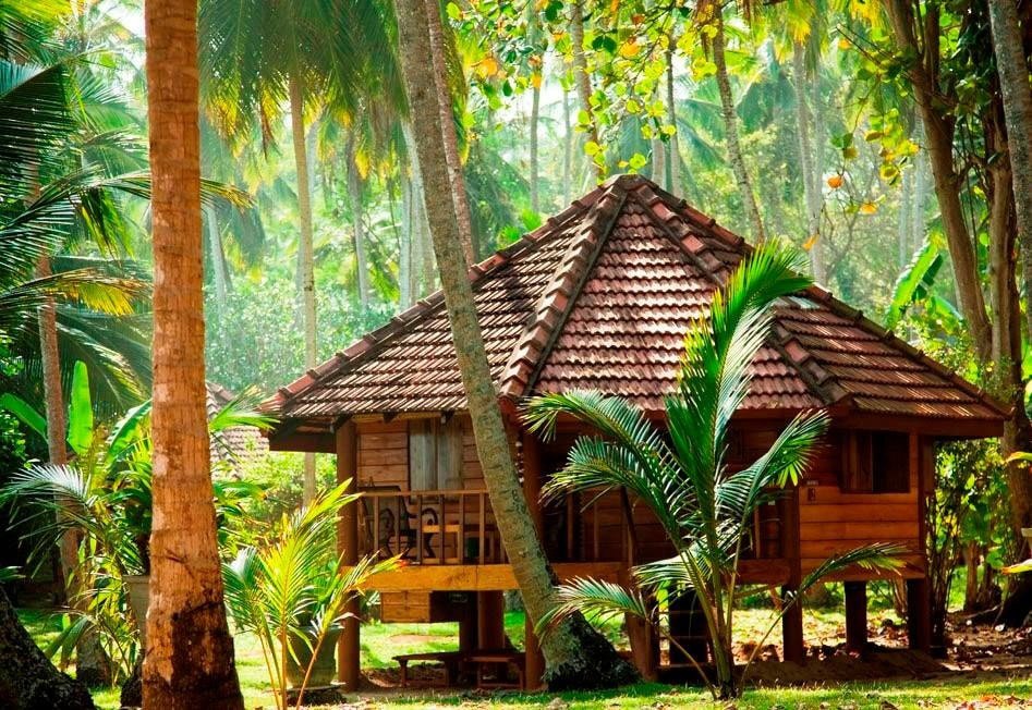 Quaint cabanas and huts at the Palm Paradise Cabanas hotel