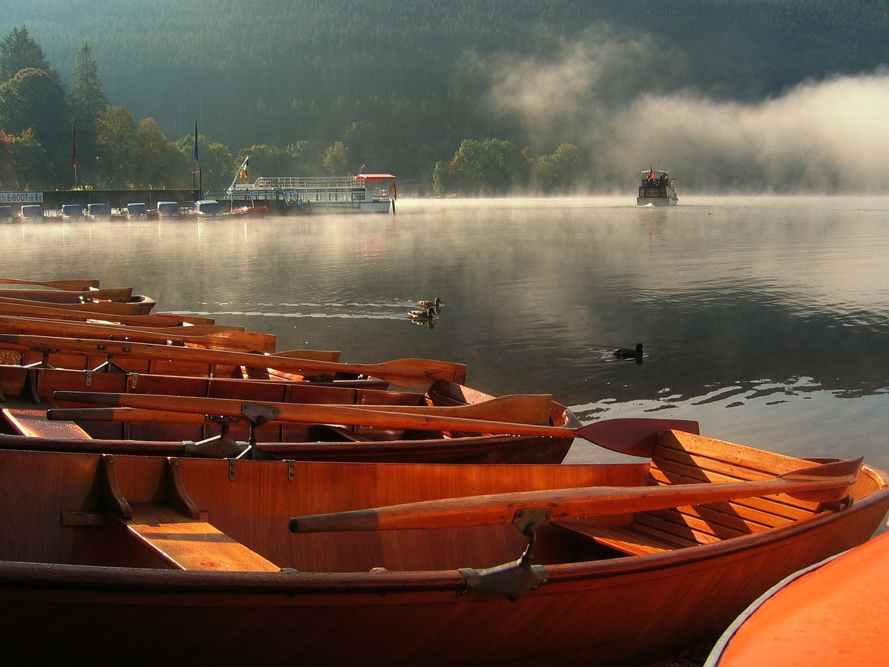 10 Things To Know Before Visiting The Titisee Lake Black Forest