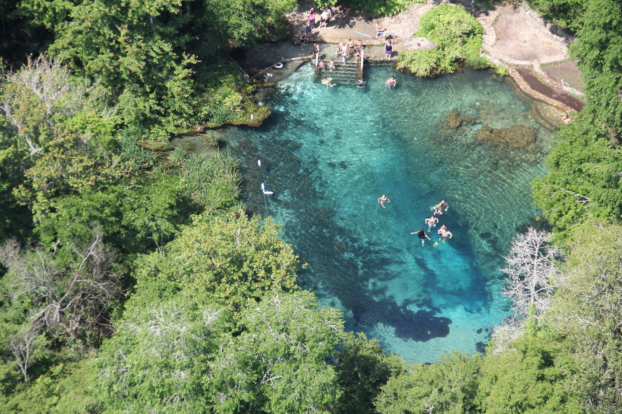 19 Incredible Freshwater Springs in Florida on kingwood map, galveston map, iran map, league city map, missouri city map, manor map, weslaco map, caldwell map, nacogdoches map, lackland map, katy map, andrews afb map, temple map, kelly new mexico, new braunfels map, plano map, wichita falls map, schertz map, port isabel map, granbury map,