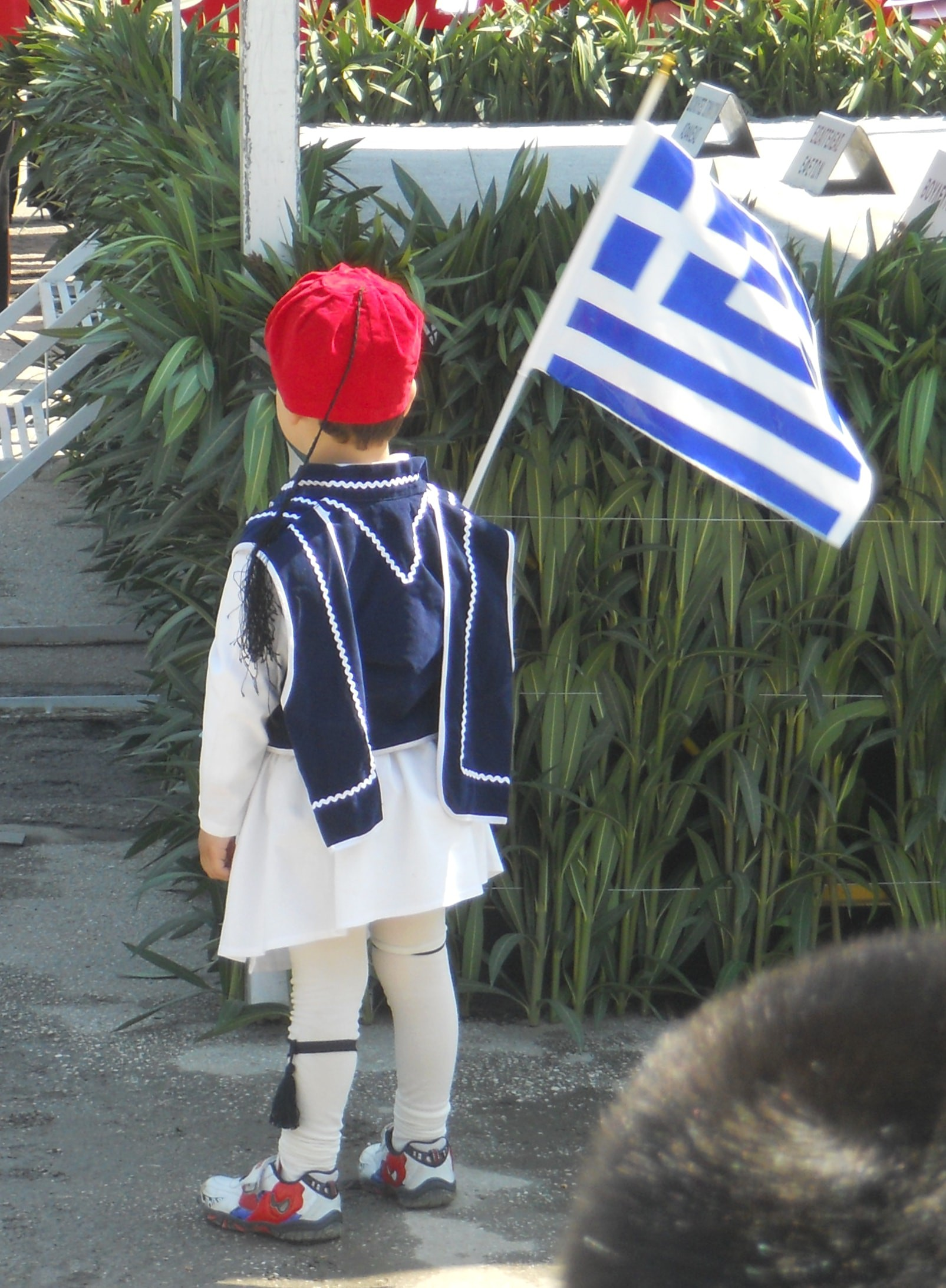 The Story Behind the Greek Flag