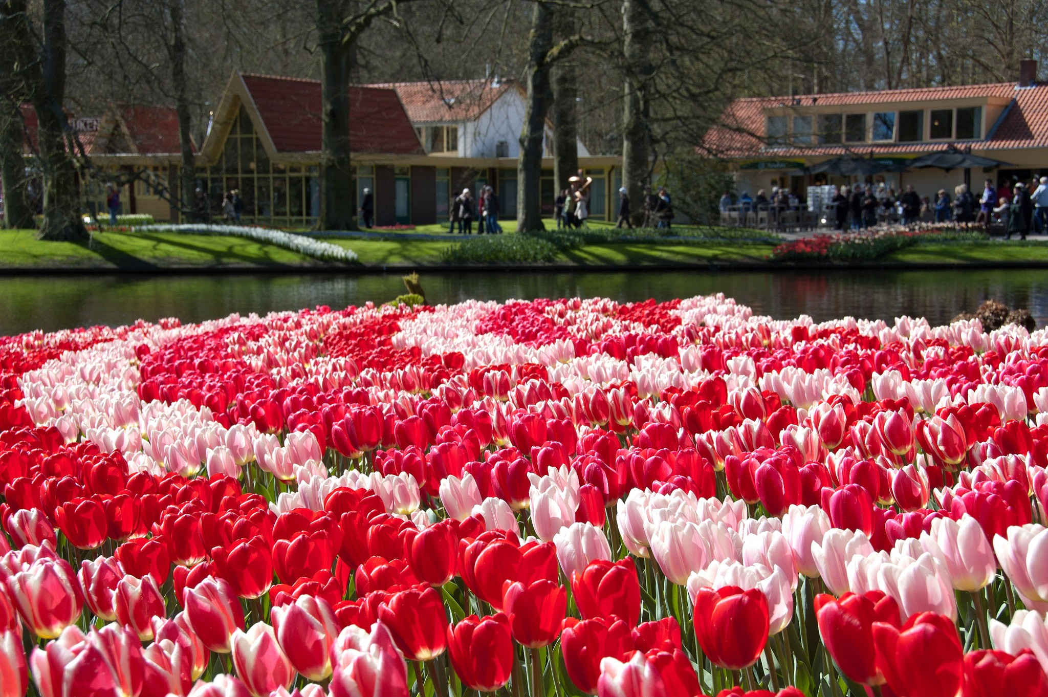 Flowers In Europe The Best Blossoms And Blooms To See In Spring