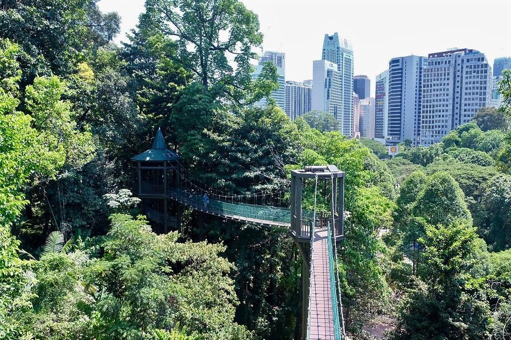 The 10 Best Ecotourism Experiences near Kuala Lumpur, Malaysia