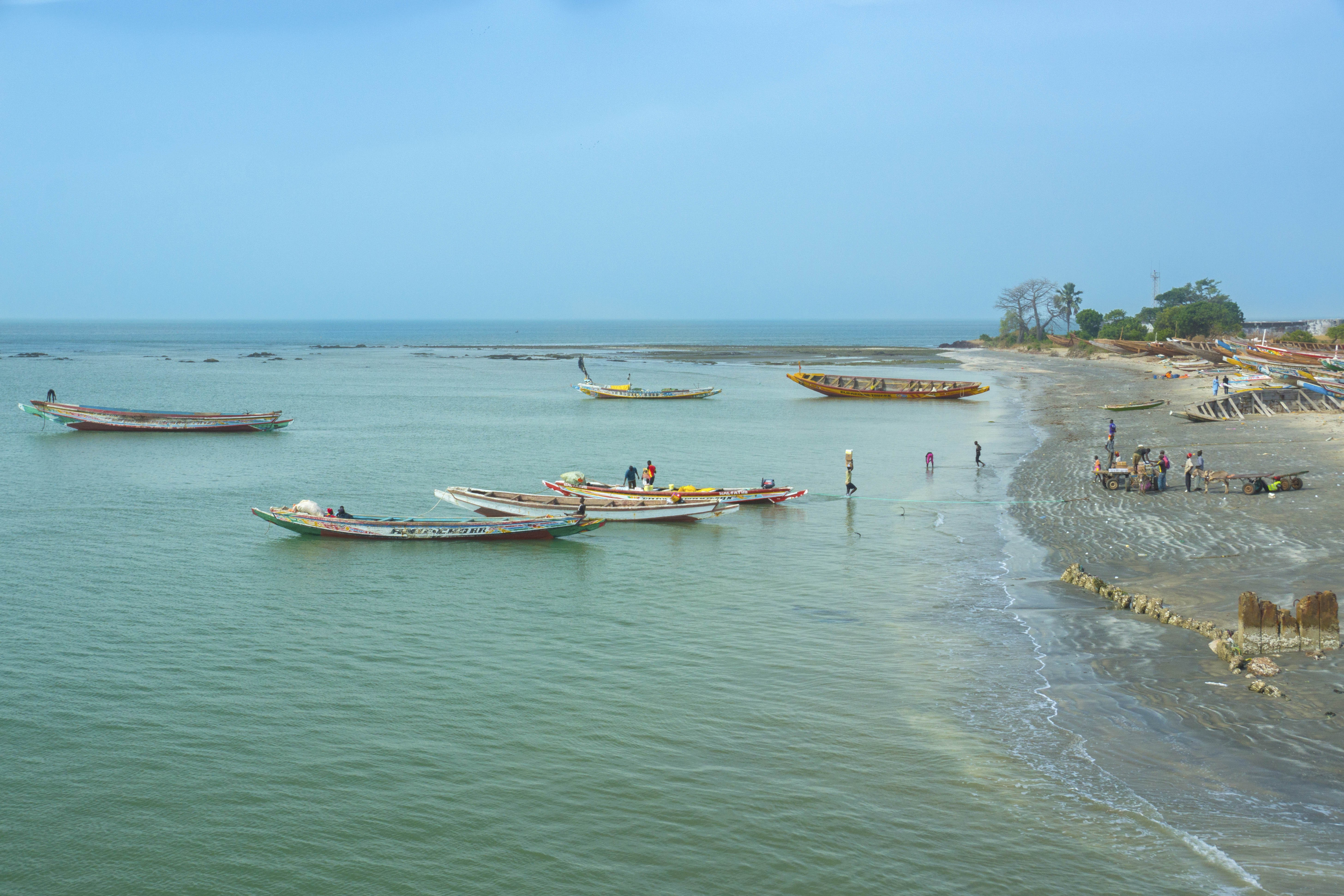 The Best Things To Do In The Gambia
