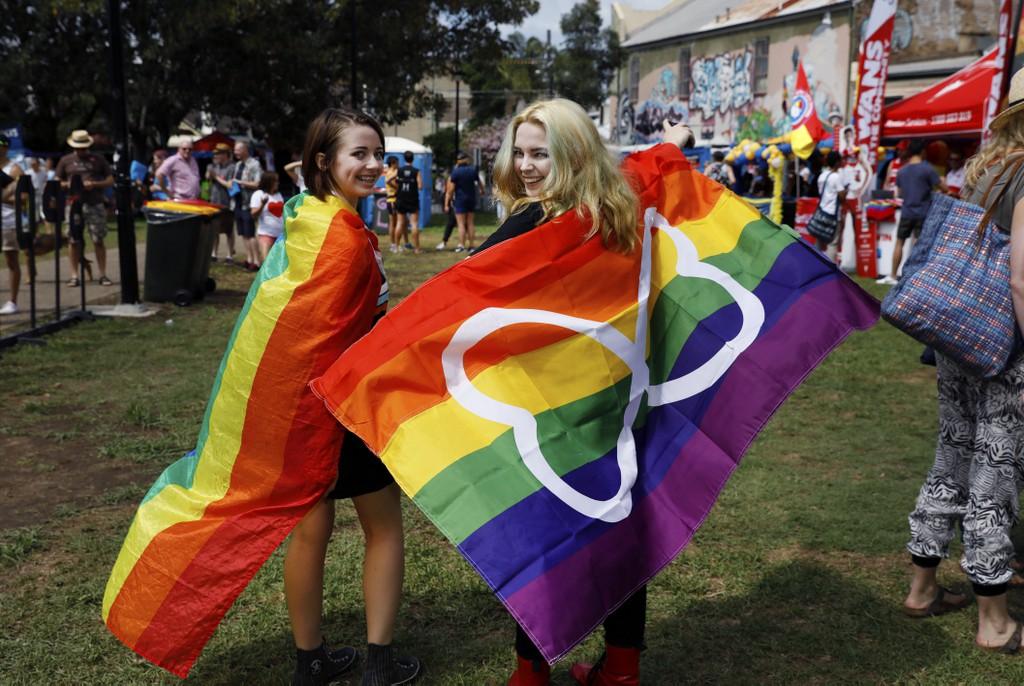 sydney gay bears