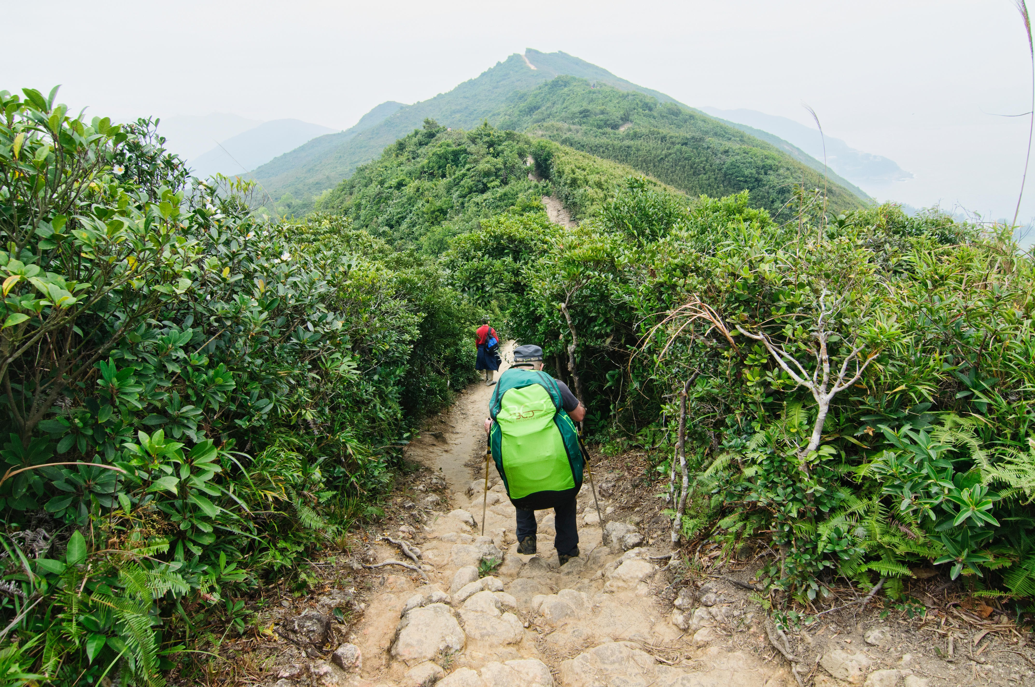 The Easiest Hiking Trails for Beginners