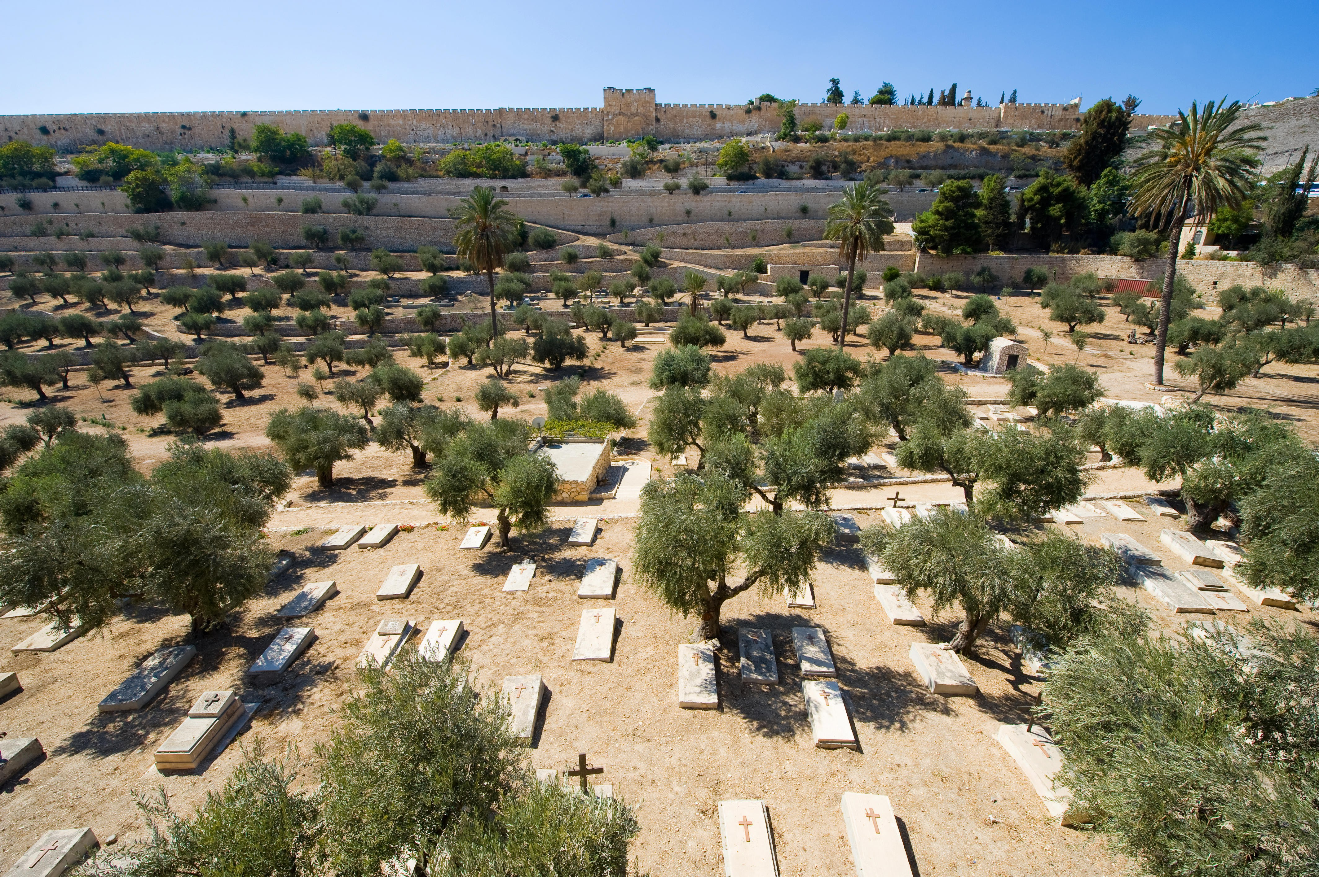 Free and Budget Walking Tours of Jerusalem