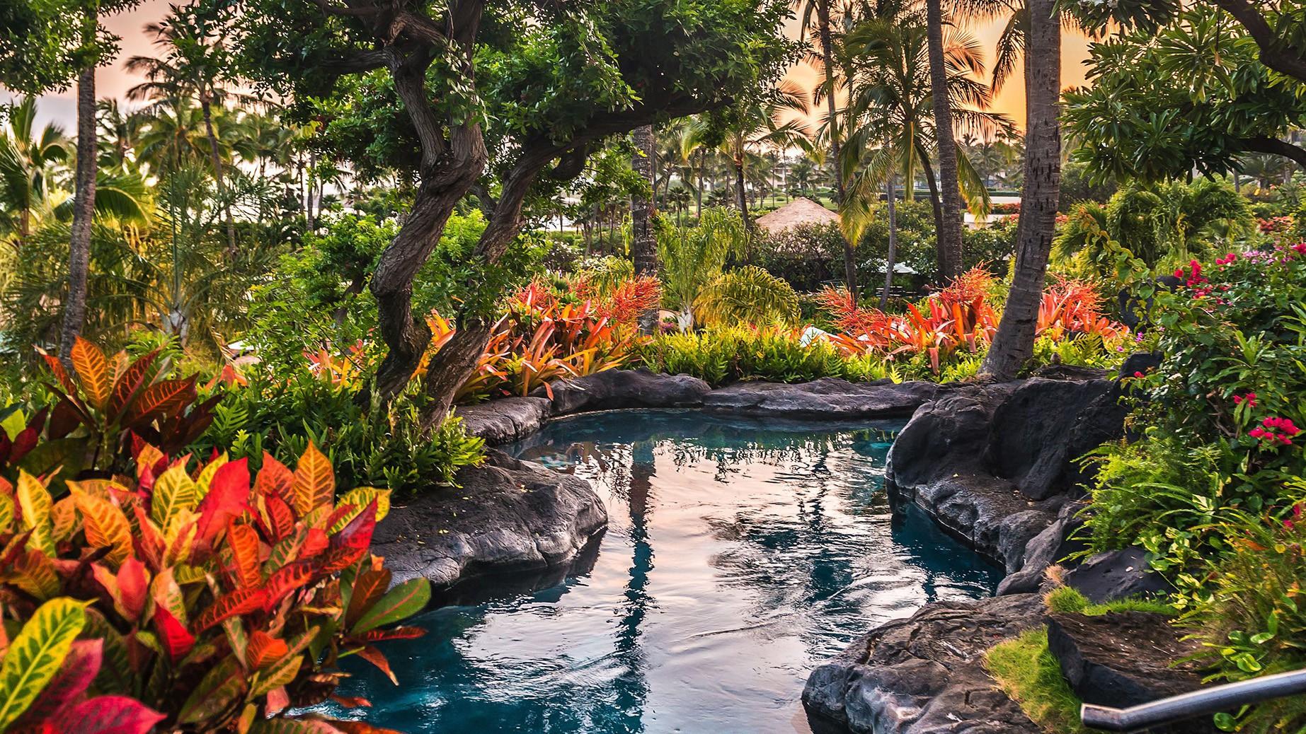 Courtesy of Grand Hyatt Kauai Resort and Spa / Expedia.com