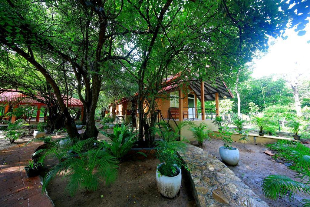 Courtesy of Safari Lodge Yala / Booking.com