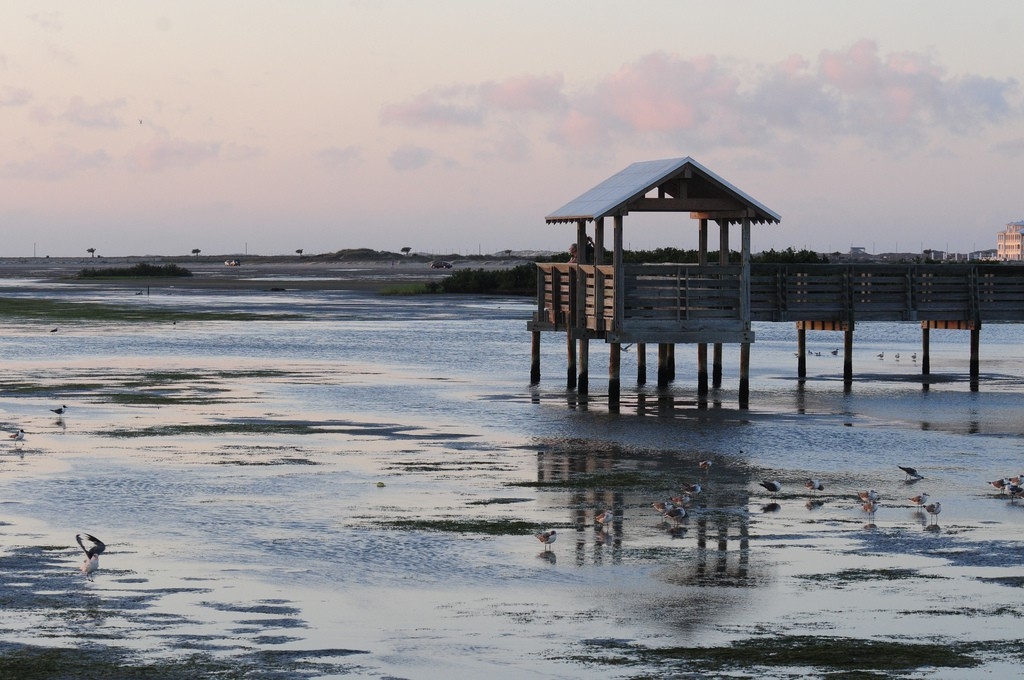 The Top 10 Restaurants On South Padre Island Texas