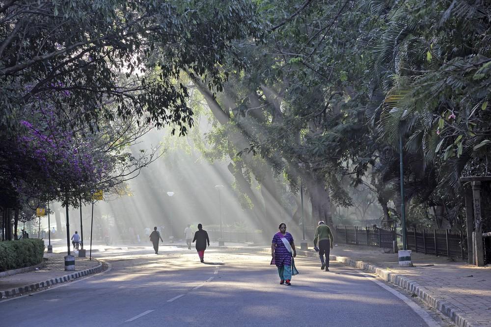 Bangalore - Bars & Cafes