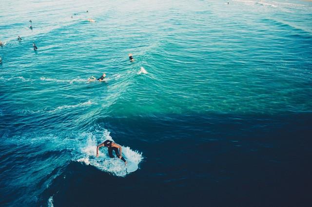 surfing   © pexels