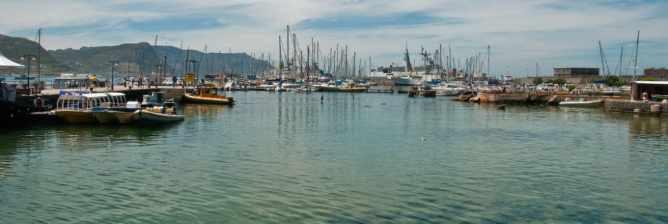 The 10 Best Restaurants In Simonstown, Cape Town
