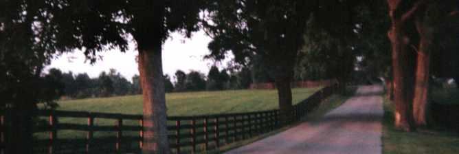 The Best Parks In Lexington, Kentucky