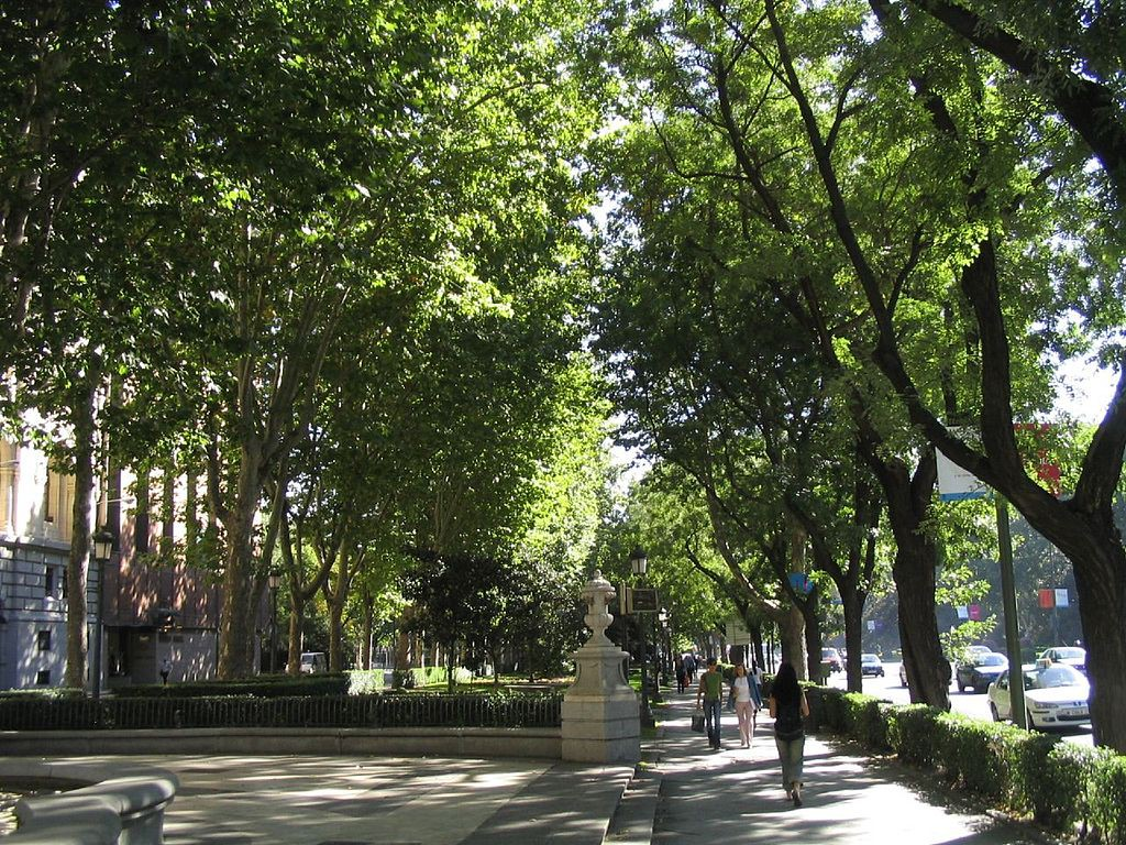 The Paseo del Prado | © tnarik / WikiCommons