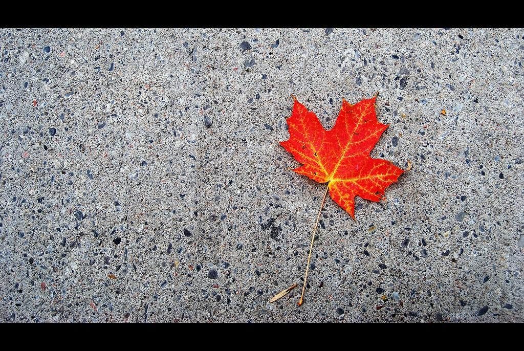 O Canada | © Rick Harris / Flickr