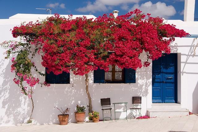 Lefkes (Paros Island)