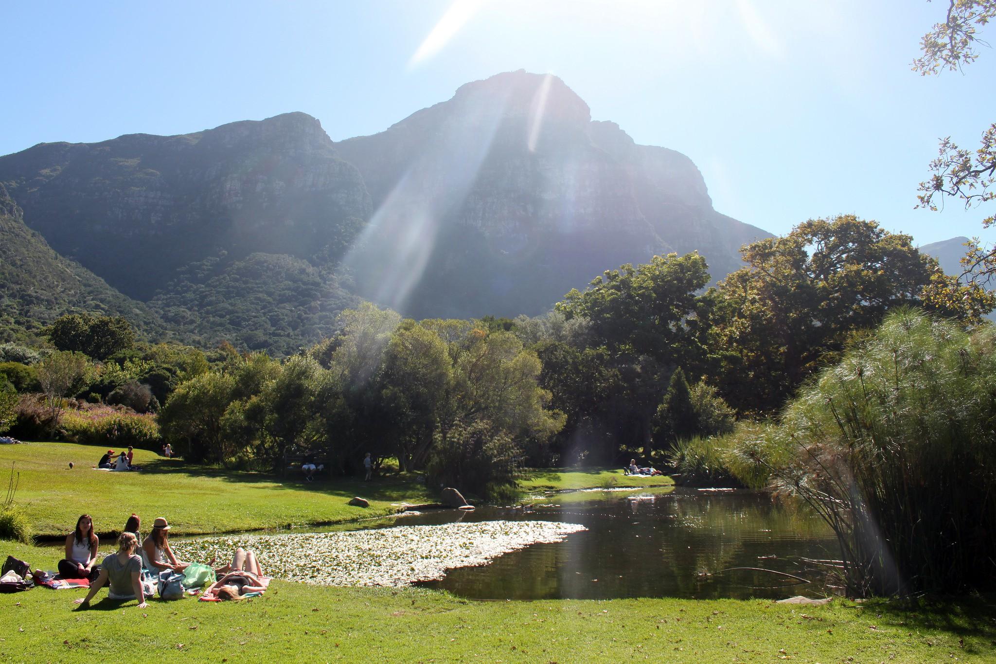 Picnicking at Kirstenbosch Botanical Garden