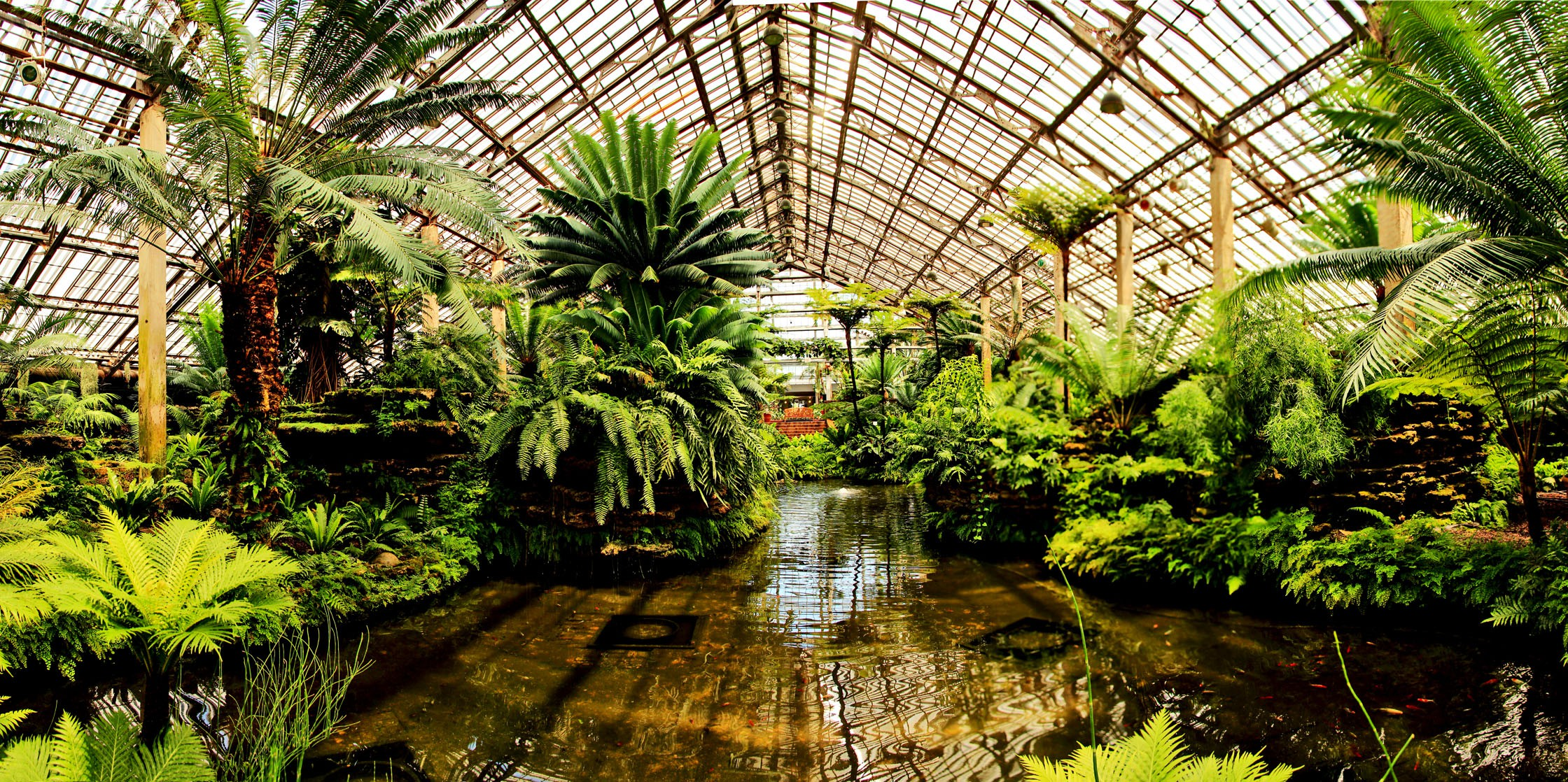 Garfield Park Conservatory | © Peterson.jon/WikiCommons