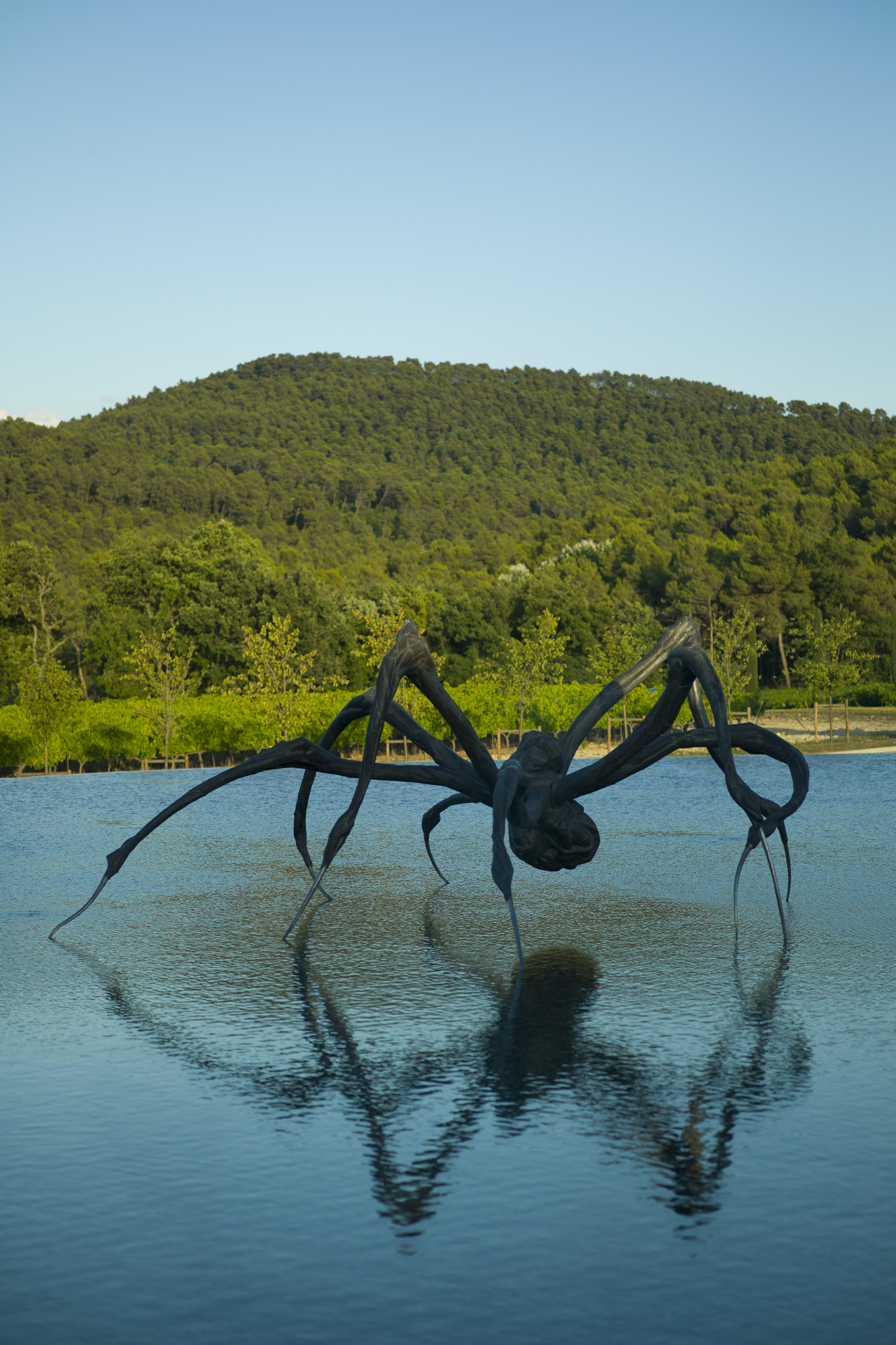 The crouching spider is the first thing you see upon arrival at Château La Coste | © Andrew Pattnam