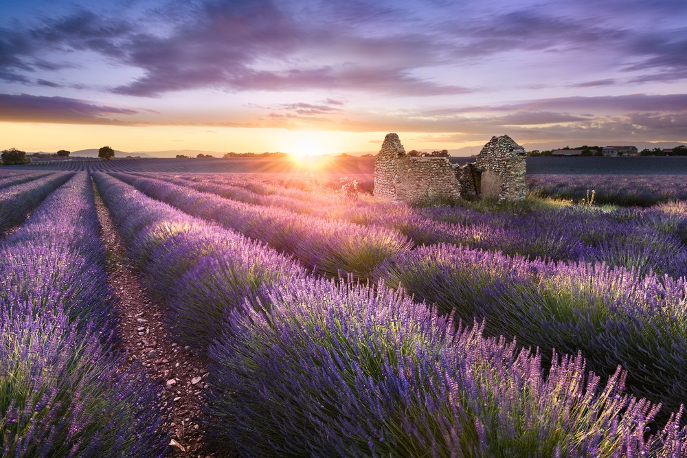 There are so many amazing reasons to visit Provence | © Barat Rowland/Shutterstock