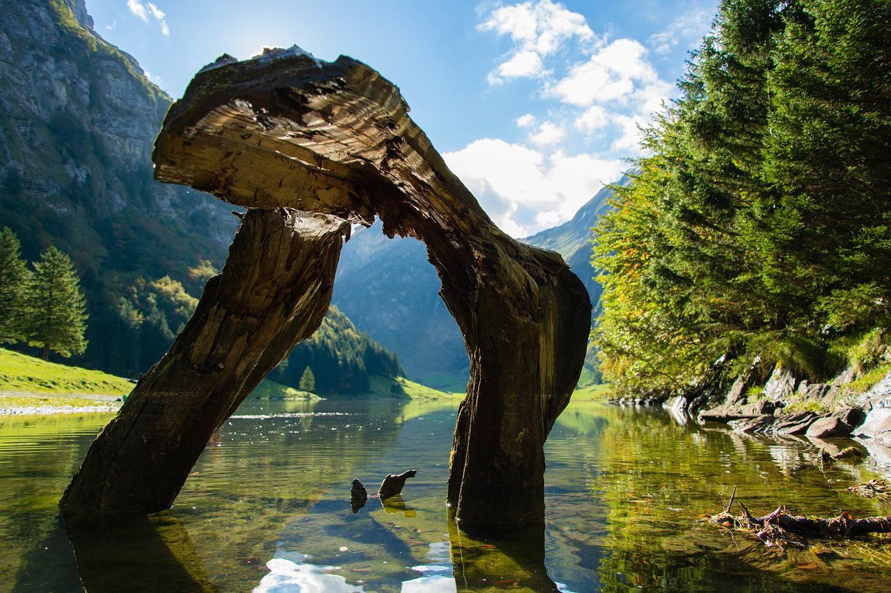 Discover Switzerland's natural wonders | © goromir / Pixabay