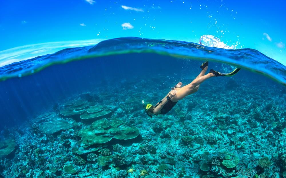 Go snorkeling to unlock the ocean | © William Bradberry/Shutterstock