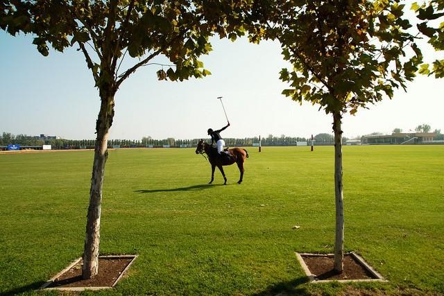 Polo Polo Field | © Jonathan Kos-Re