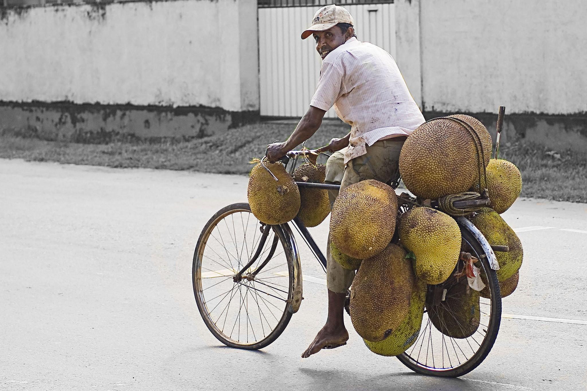 Jackfruit carrier © Hafiz Issadeen/ Flickr