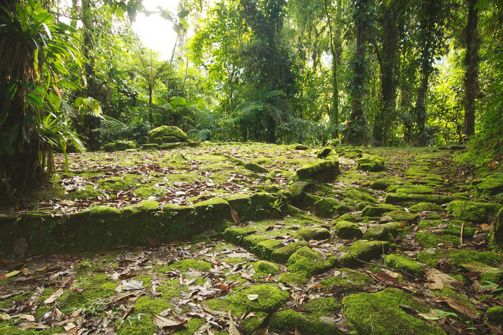 The Lost City?   © McKay Savage / Flickr