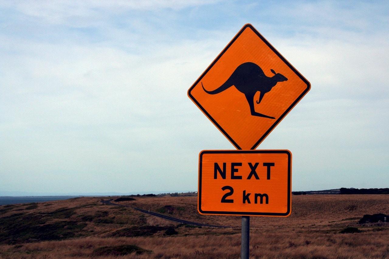 Kangaroos Crossing | © moerschy/Pixabay