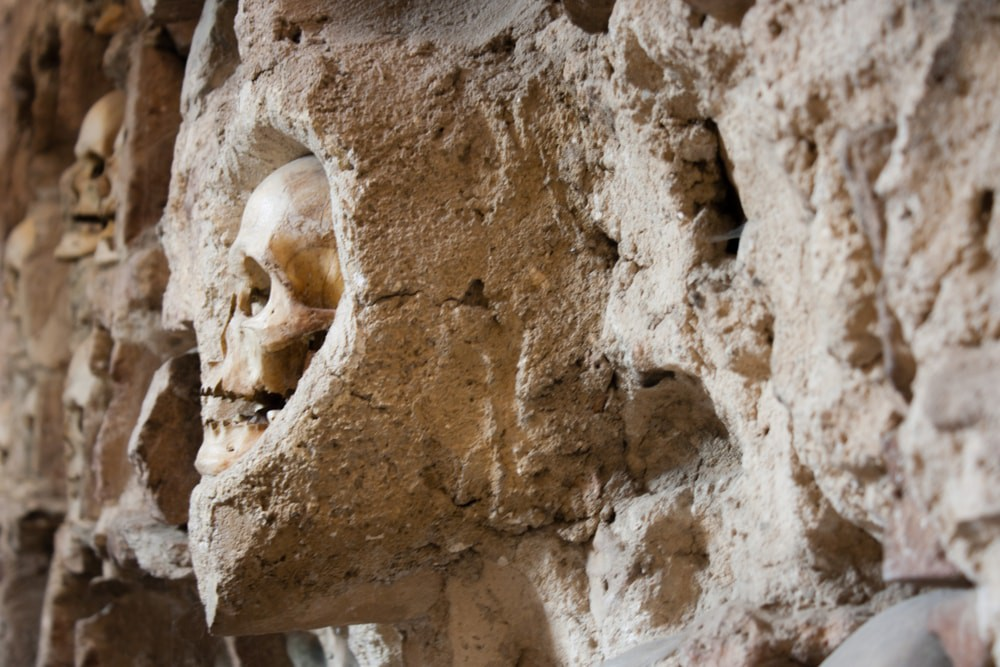 Human skulls shouldn't be in towers | Kristina Bojovic/shutterstock