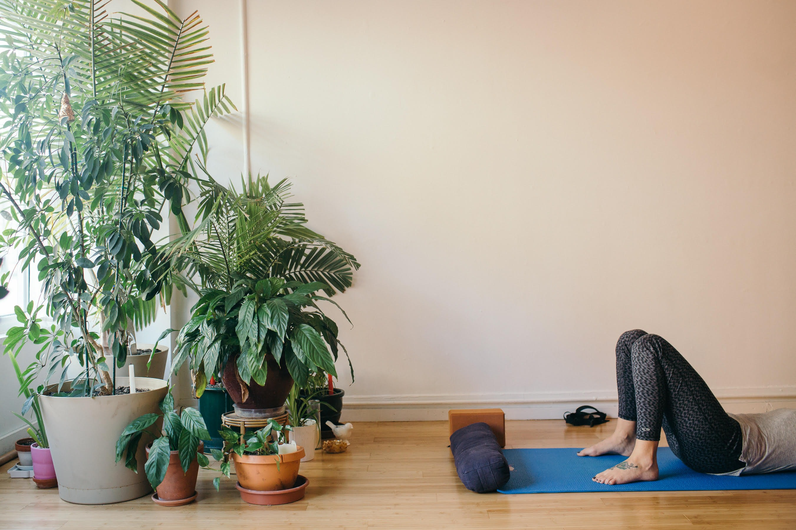 A peaceful yoga class at Yess Yoga.