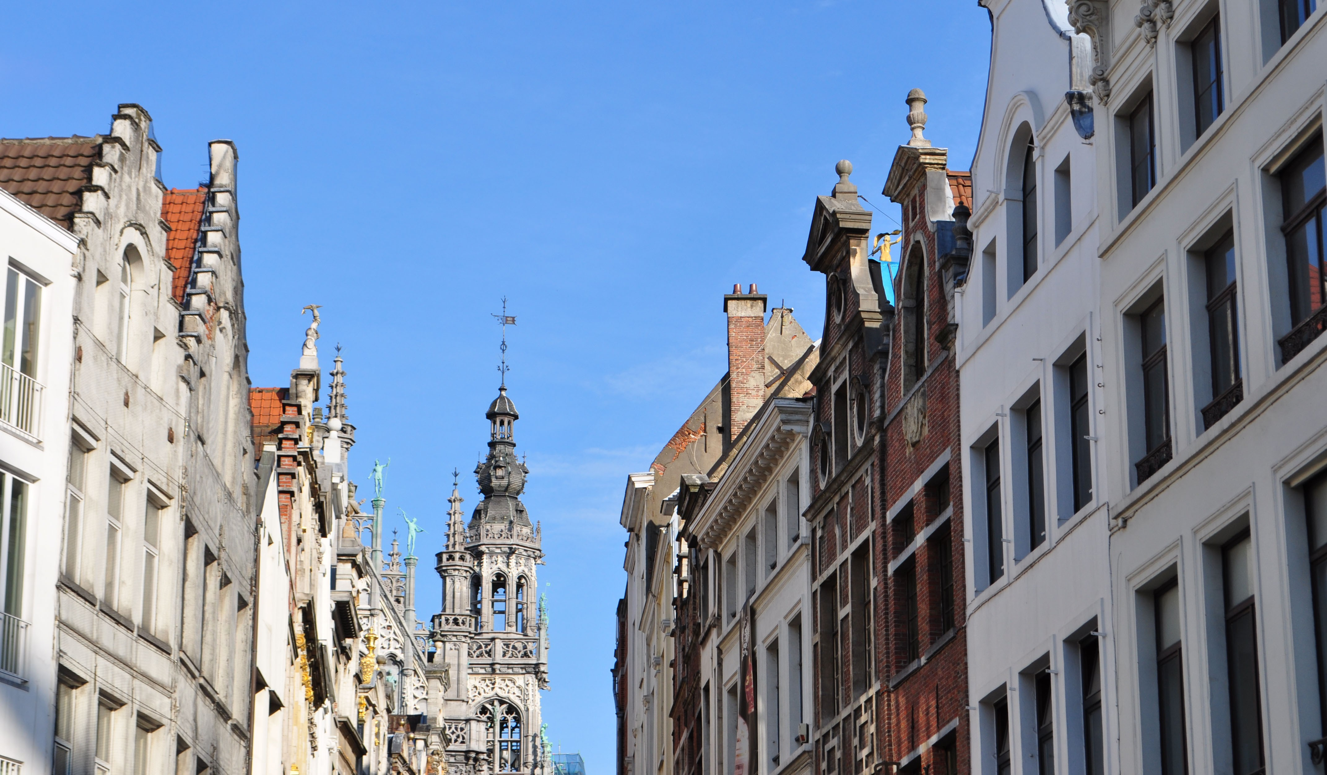 Rooftops, Grand Place, Brussels.